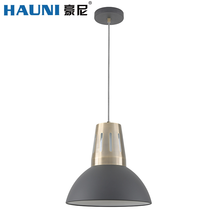 Pendant Lamp-HN8221L