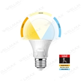 Segmented Color LED Bulb-Ballet Series