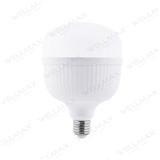 Ballet Series LED T Bulb