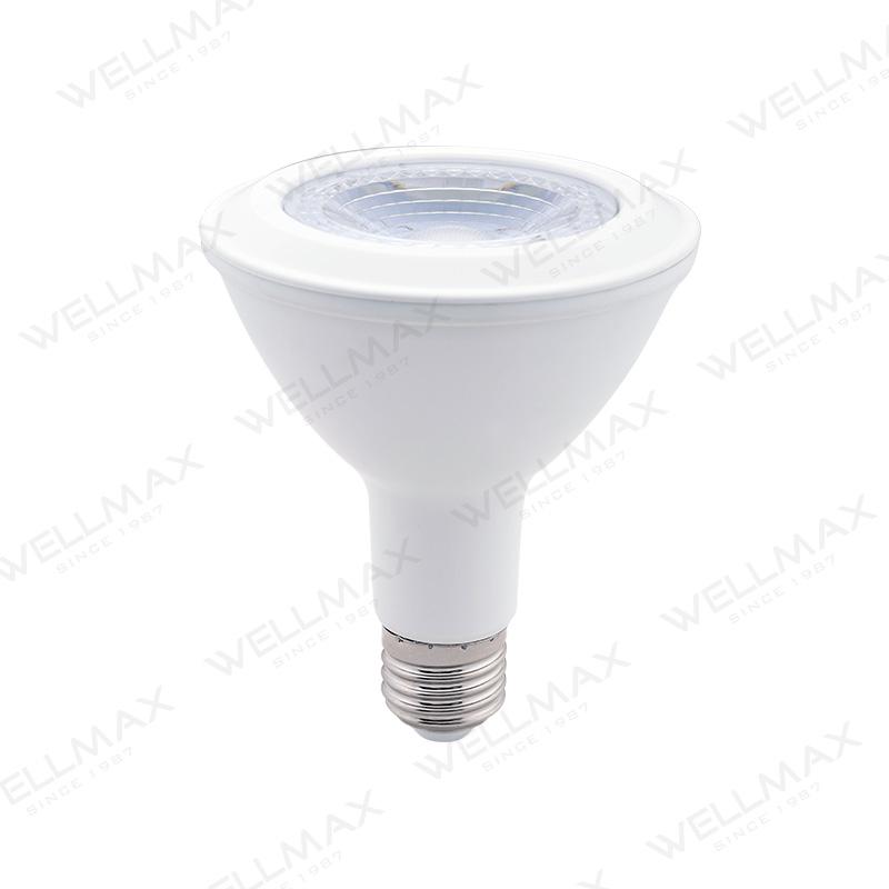 LED Par Lamp Par20 Par30 Par38