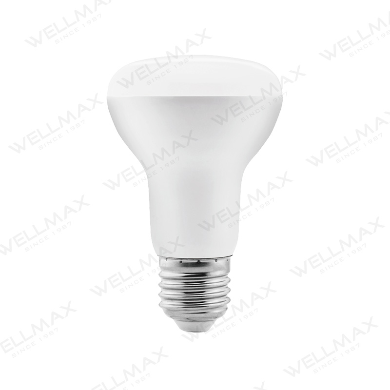 LED R Lamp Series R39 R50 R63 R80