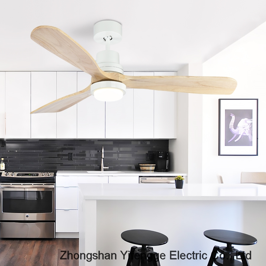 ceiling fan with light Ceiling living room solid wood LED light