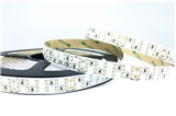 240LED M 3014 Led Strip Light 3014 led ribbon 3014 led tape 3014 led strip 3014
