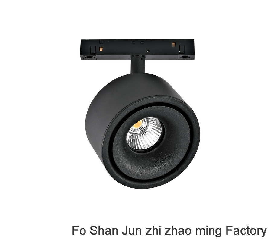 Magnetic absorption track lamp