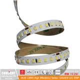2835 LED Strip-160 m 24V CRI95 19.2W 120LM W LED STRIP