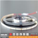 2835 LED Strip-160-m 24V CRI95 9.6W 120LM W LED STRIP
