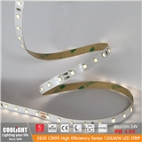 2835 LED Strip-80 m 24V CRI95 4.8W 120LM W LED STRIP