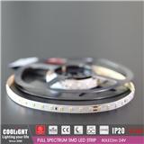 2835 LED Strip-80LED m 24V CRI95 R1-R1590 14.4W FULL SPECTRUM SMD LED STRIP