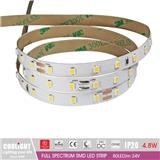2835 LED Strip-80LED m 24V CRI95 R1-R1590 4.8W FULL SPECTRUM SMD LED STRIP