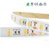 60led M 5630 led strip light 5630 led tape light 5630 led ribbon light