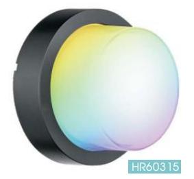 Smart Garden Wall Light 7W 10W WIFI BLUETOOTH connected CE ROHS